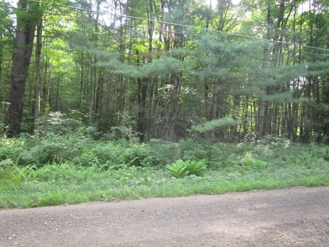 Country road - beautiful wooded lot