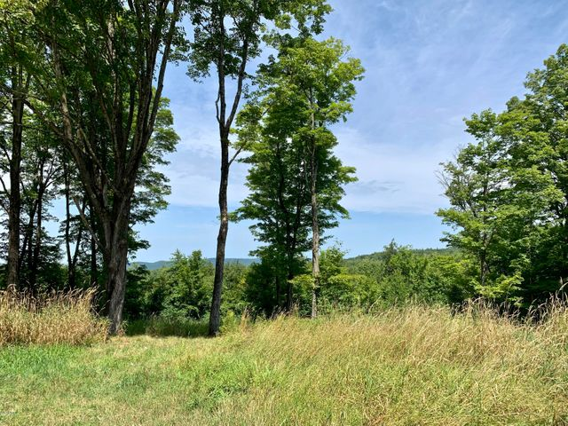 lot 7 New Marlborough Hill Rd, New Marlborough, MA 01230
