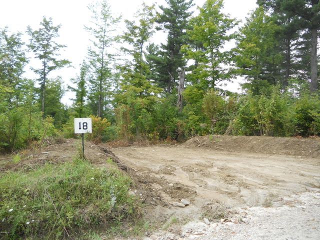 Beginning of driveway cut in Lot 18