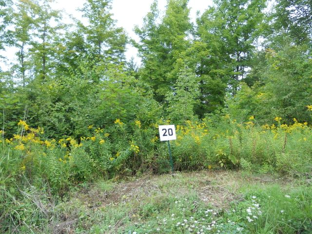 LOT 20 Jenks Rd., Cheshire, MA 01225