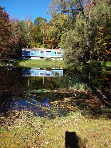 168 North Beech Plain Rd, Sandisfield, MA 01255
