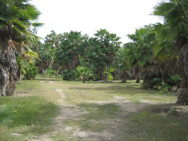 Las Huertas, 2.3 acres in Todos Santos, Pacific,