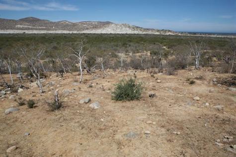 Sierra View Lot 8, East Cape,