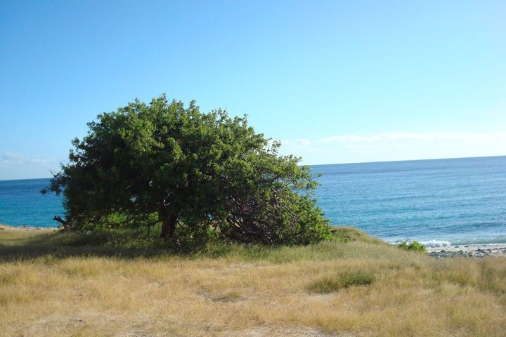 S/N, Bella Vista Beachfront Lot, East Cape,