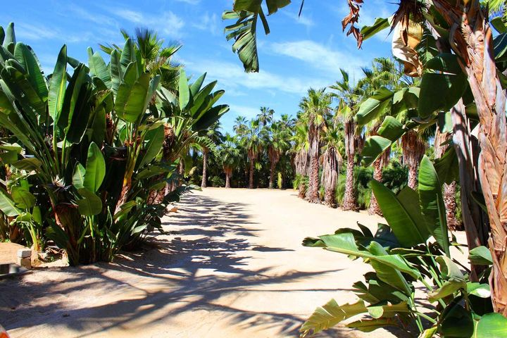 Calle sin Nombre, Palm Grove Lot #12, Pacific,