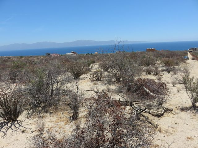 El Sargento, Large Land Lot, La Paz,