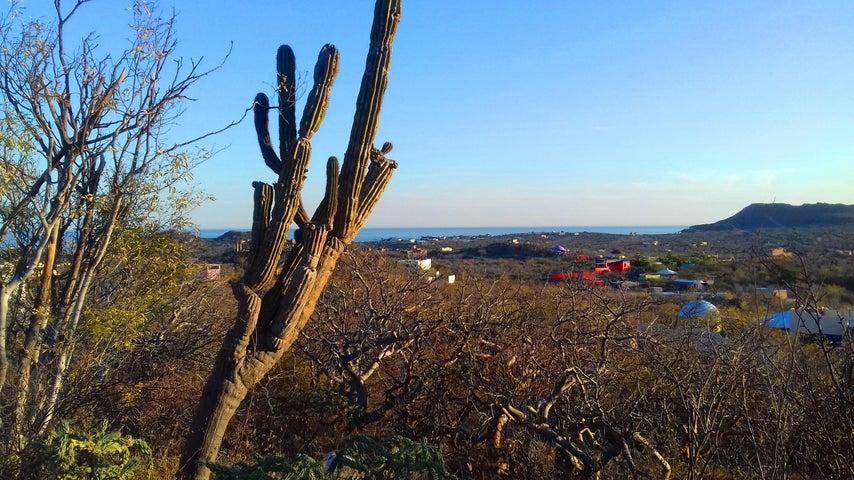 View of Punta Gorda
