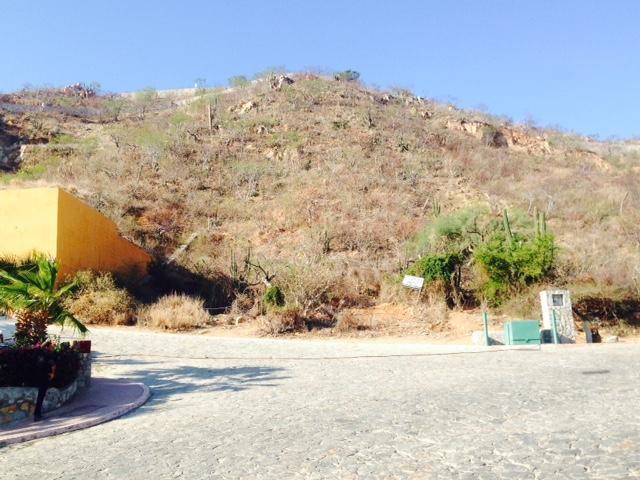 95 Camino al Colegio, Lote Comercial Pedregal, Cabo San Lucas,