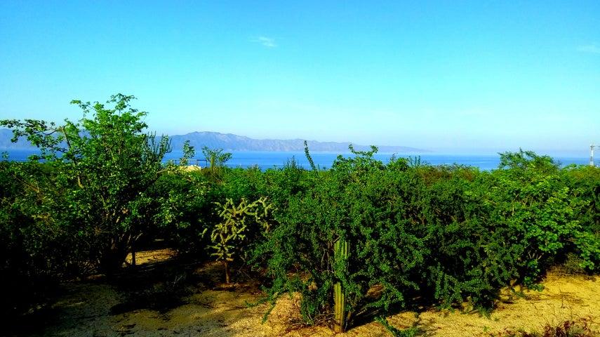 Sin Nombre, Great Elevation, La Paz,
