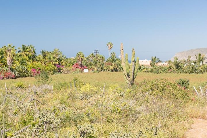 Views toward San Pedrito