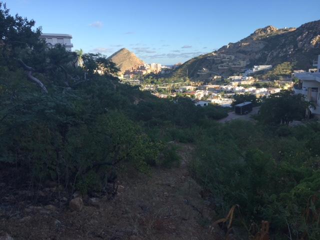 Camino Grande, Cabo San Lucas,