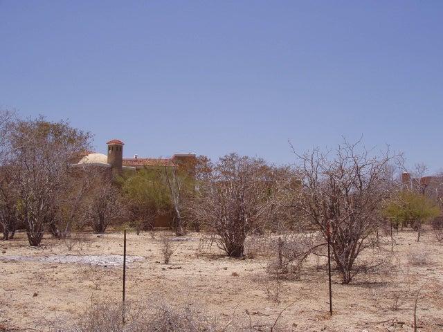 Palo BLanco, Lote Maya, East Cape,