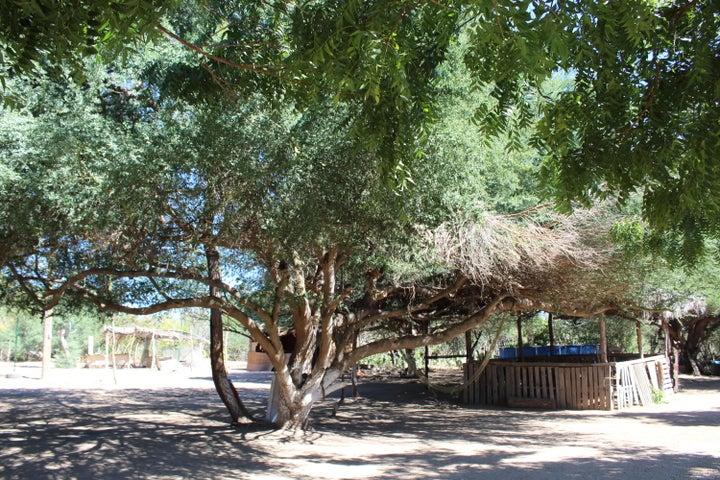 Boca de la Sierra, Rancho Las Palmas - Boca de Si, East Cape,