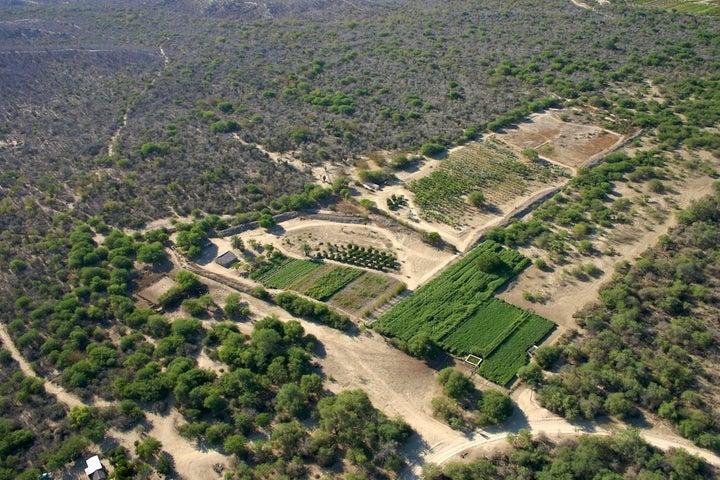 Domicilio Conocido, Rancho Los Potreros, San Jose del Cabo,