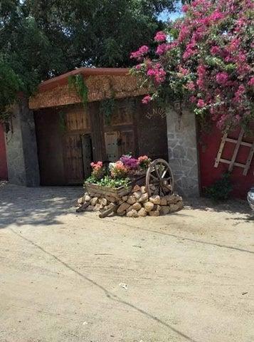 8 & 9 Dorado, Casa Libertad, Cabo San Lucas,