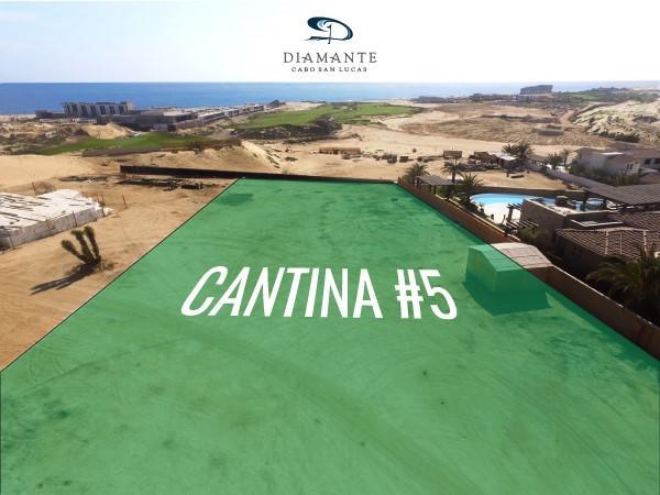Cantina 5, Diamante, Pacific,
