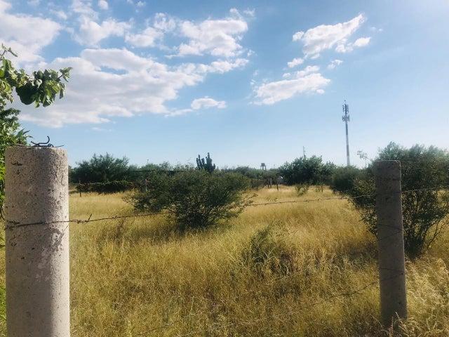Tammia, Terreno Calafia, La Paz,