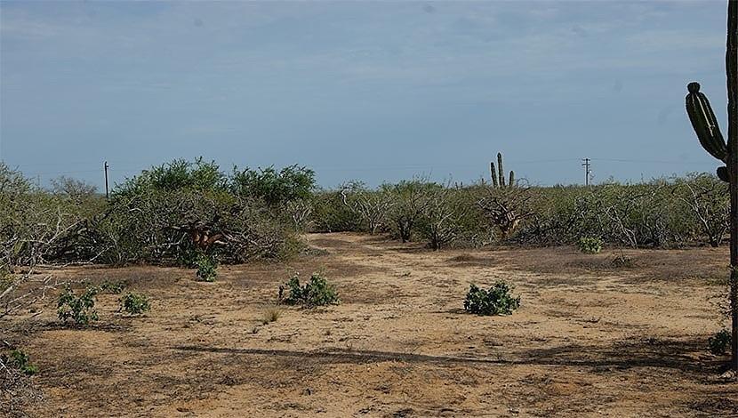 Meliton Albañez, 3 Hectareas en Meliton Albañez, Pacific,