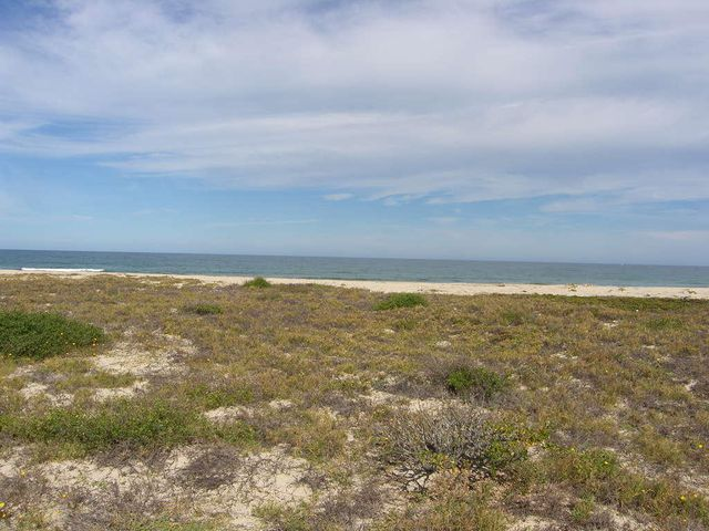 3,736 M2, approximately 1 acre