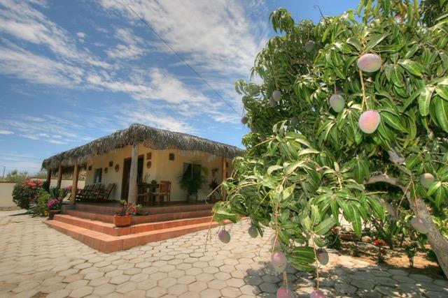 Buena Vista, Casa Tortuga del Mar, East Cape,