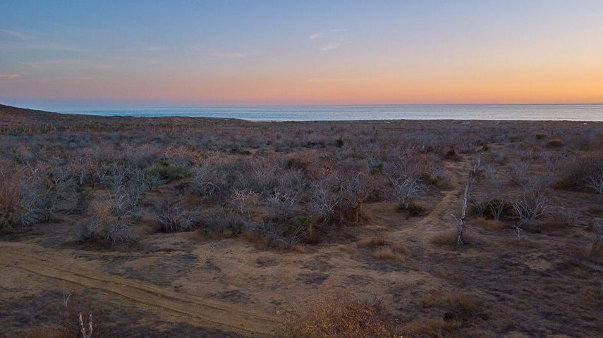 Rancho Migriño, Pacific,