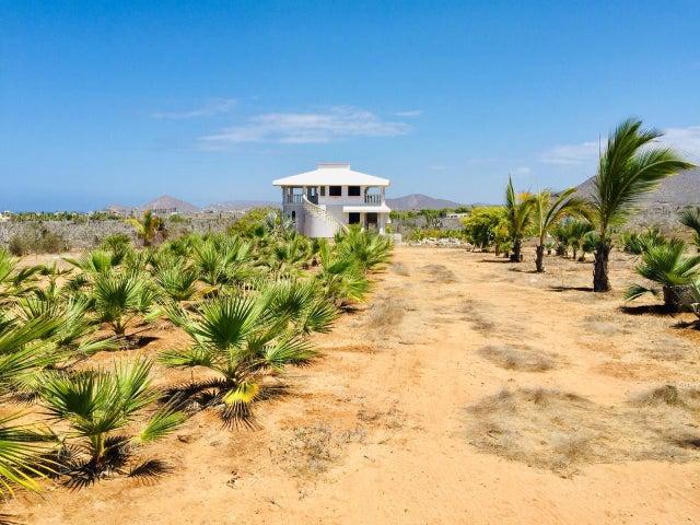 Los Cerritos beach area, Las Palmas Lot, Pacific,