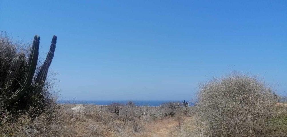 46 hectares, 46 hectares, Comondu,