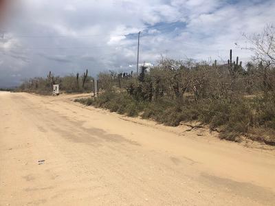 Cerritos Main Access Road, Lote Main Drag, Pacific,