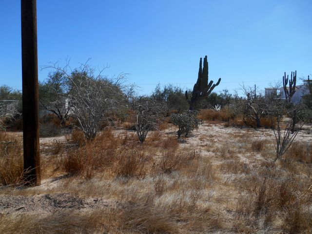 Nice level lot in the beachside community of El Comitan, just 5 minutes walk from the Bay of La Paz. Electricity, water, phone and high speed internet are at the road. Lot is .4 of an acre. This owner has two back to back lots for sale at $30,000 US each lot, for .8 of an acre in total, running between Street 5 and Street 6.