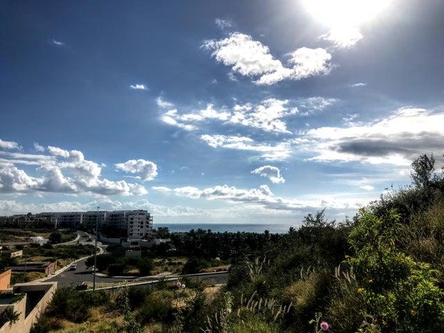 Loma Linda View