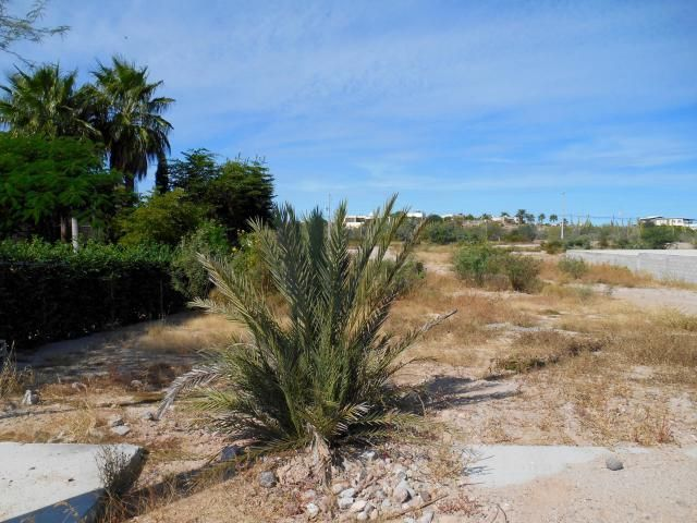 Easy to build on this level lot in an area of nice homes in Lomas del Centenario. With 1014 m2, walled/fenced on two sides, on a quiet street with great neighbours, it's the perfect location to build your Baja get-away! Ten minutes from shopping in La Paz, and 15 to El Centro. There will be views of the Bay and city lights from your roof-top terrace.