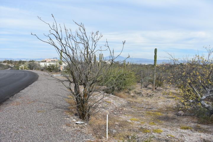 This gently sloping lot is located in Phase 2 of  sought-after Haciendas Palo Verde master planned community in El Centenario, just 15 minutes from major shopping and restaurants in La Paz. The > 1/3 acre lot has views of the Bay, city lights and mountains behind, and Isla Espiritu Santo, and features multiple mature cacti on the lot but outside the optimal footprint of a future dream home.Haciendas Palo Verde is a premier gated community featuring 24/7 gated access, paved roads, underground infrastructure, casa club with lap pool and gym, and curbside garbage collection. HOA annual fees are 9,942 pesos for lot owners and 18,365 pesos for home owners.