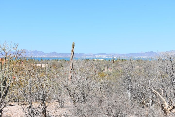 Nice 1/4 acre lot with great view of the bay of La Paz, city lights and mountains. The land slopes down in front, so the view is well protected. The lot is fully serviced with electricity, municipal water and sewer, and has installed curbs, sidewalks, and driveway. Priced to sell!