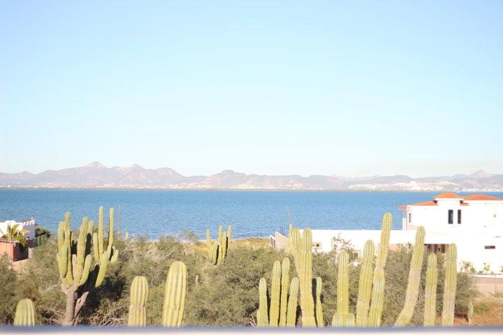 Close up Ocean View