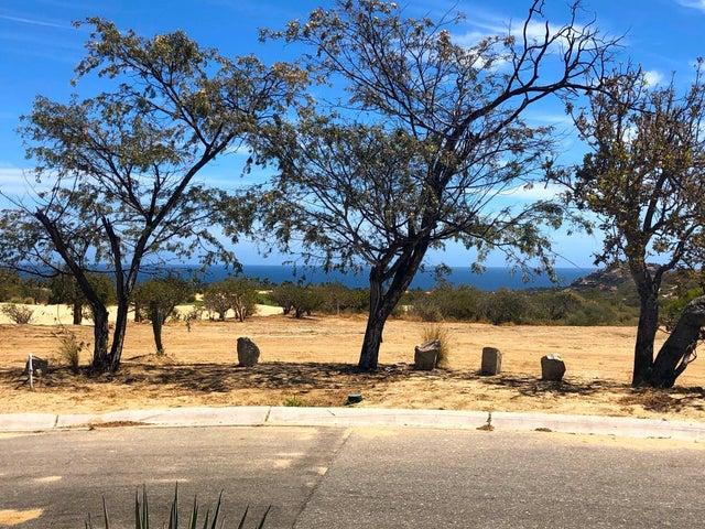 40 Palmilla Homesite Oasis Palmilla 40, San Jose Corridor,