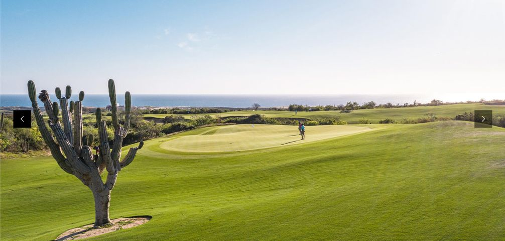Cardonal golf