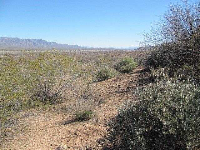 5V E Hwy. 188, Tonto Basin, AZ 85553