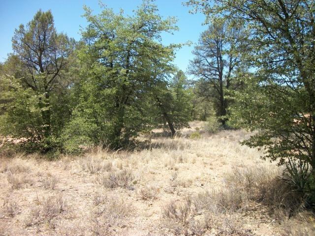 407 S Forest Ridge Court, Payson, AZ 85541