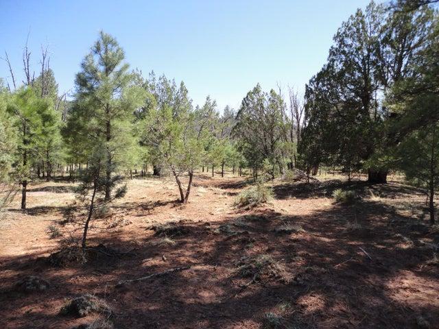 Lot 43 Ponderosa Springs, Payson, AZ 85541