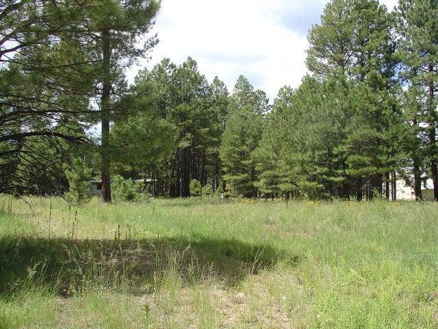 1272 Happy Hunting Way, Forest Lakes, AZ 85931