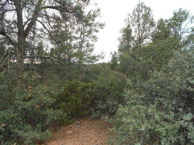 2301 E FEATHER PLUME Lane, Payson, AZ 85541