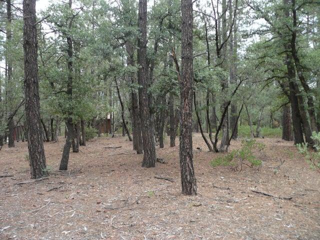 Parcel4&5 Conifer Drive, Payson, AZ 85541