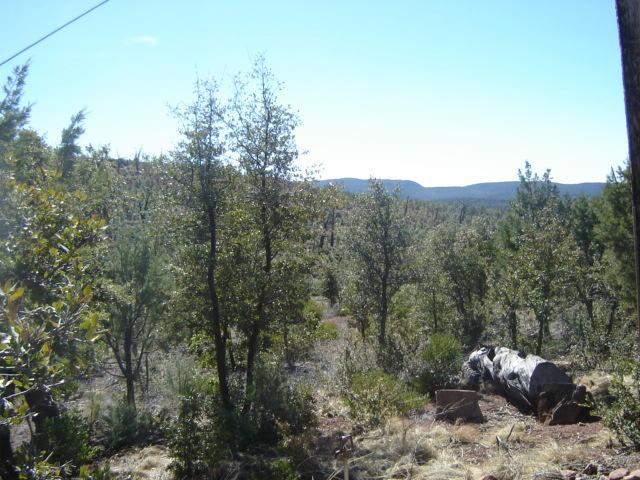41 & 42 Antelope Trail, Payson, AZ 85541