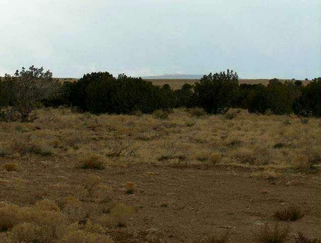 Lot 631 Chevelon Canyon Ranch, Overgaard, AZ 85933