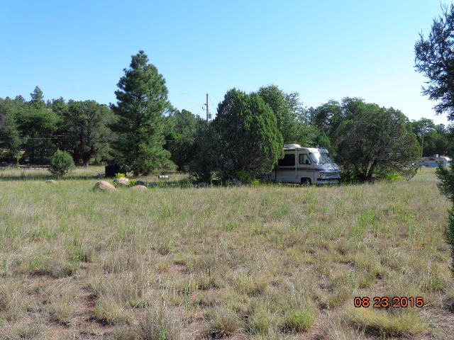 295 N Seeley Drive, Young, AZ 85554