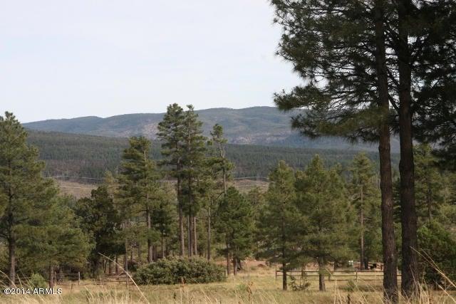 220 W Zane Grey, Christopher Creek, AZ 85541