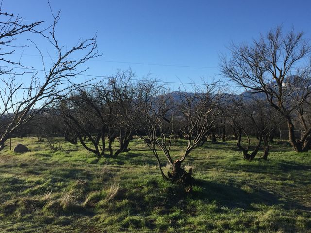 059K S Packard Drive, Tonto Basin, AZ 85553
