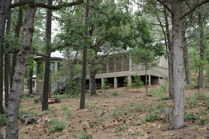 113 S Hiscox Lane, Christopher Creek, AZ 85541