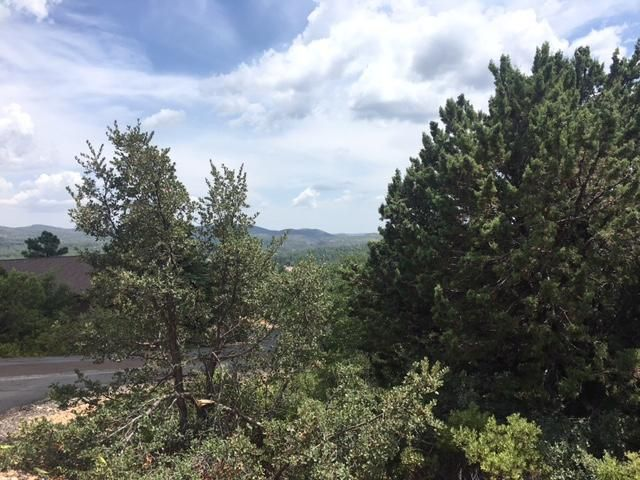 79 Turquoise Circle, Pine, AZ 85544