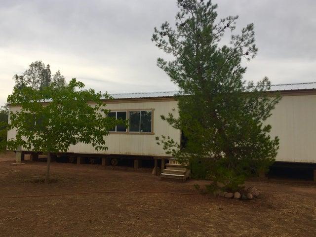 119 S Forest Road, Tonto Basin, AZ 85553